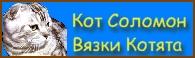 Сайт кота Соломона. Продажа котят, приглашение на вязку